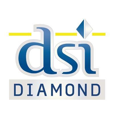 Diamond Systems Inc.